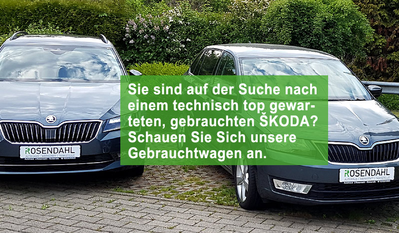 Auto Rosendahl Drensteinfurt - AUTOFIT Werkstatt Tankstelle Waschanlage Skoda-Service | Skoda Gebrauchtwagen